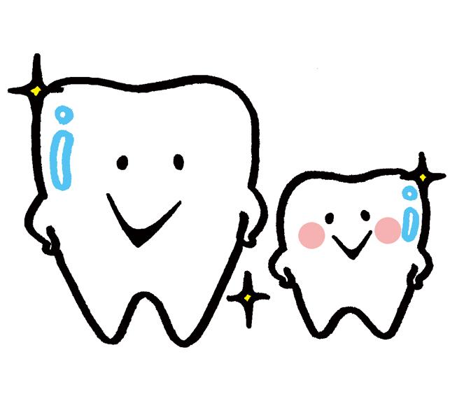 歯 モリタ.jpg